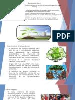 Un ensayo sobre la transformación de recursos locales en mercancías globales.pptx