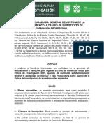 BASES CONVOCATORIA PDI 2019 CON OBSERVACIONES.pdf