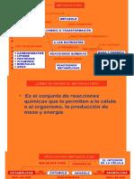 BQMII 1.0 INTRODUCCIÓN AL METABOLISMO..pptx