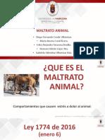 MALTRATO ANIMAL...pptx