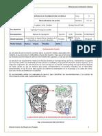 Taller 6 - Sincronización 2019-II Ramos Gaspar Jordy.docx