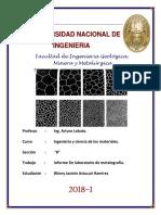 CARATULA FIGMM UNIicm.pdf