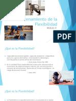 Personal-Trainer-Módulo-4-Entrenamiento-de-la-Flexibilidad.pdf