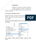 Tutorial_Vectorizacion.pdf