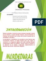 PRIMEROS-AUXILIOS-PICA.pptx