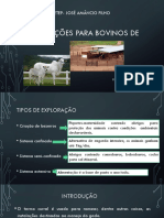 Instalações pava bovinos