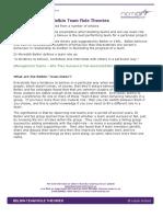 belbin_team_role_theories.pdf