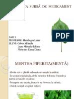 FRUNZA CA SURSA DE MEDICAMENT.pptx
