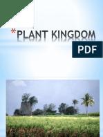 PLANT KINGDOM.pptx