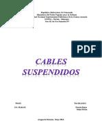 Cables Suspendidos Trabajo.docx
