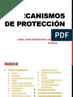 26. Mecanismos de protección.pptx