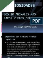 LOS 10 ANIMALES MAS RAROS Y FEOS DEL.pptx