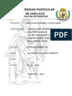 LEY GENERAL DEL MEDIO AMBIENTE N°26811.docx
