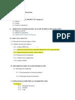 PLAN DE MARKETING INTERNACIONAL.docx
