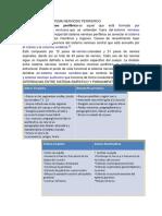 DEFINICION DEL SISTEMA NERVIOSO PERIFERICO.docx