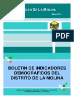 boletin demografico_molina 2015.pdf