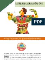 Biomoléculas-orgánicas.pptx