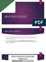 BRACHIAL PLEXUS [Autosaved].pptx