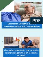 Enfermera-María-del-Carmen-Reyes-VGI-APS.pdf