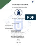 ANATOMIA TP.pdf