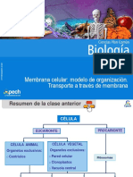 Clase 7 Membrana celular.ppt