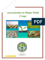 Introduction to major crop fields