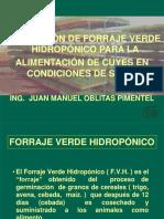 ponenciahidroponiaDRAJ13.ppt