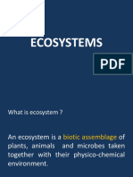 3 - Ecosystem.ppt