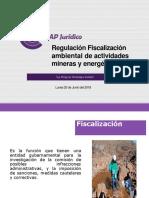 Regulación y fiscalización ambiental
