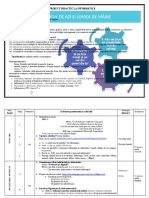 Proiect Didactic La Informatică 03.12.2019