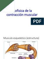 06 Biofisica de la contracción muscular.ppt