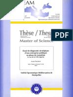 diagnostic strategique (lait).pdf