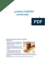 Asigurarea creditelor  comerciale.pdf