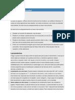 Fundamentos del básquetbol.docx
