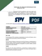Analisis de La Organización Spv Primera Entrega