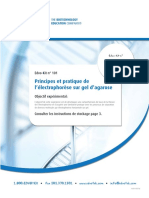electrophorese PFE.pdf