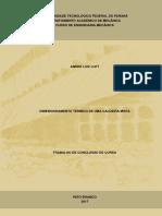 PB_DAMEC_2017_2_01.pdf
