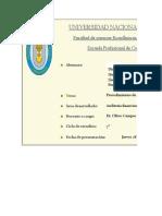 Procedimientos de Auditoria Corporación Lindley s.a-tf