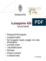 La propagazione della vite Giancarlo Scalabrelli (1).pdf
