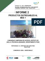 INFORME 1 - LOCALIDAD ACCOPATA.doc