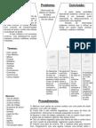 Bgano2 Relatorio Mitose Apice Vegetativo Cebola Ana Pinto