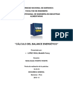 balance energetico.pdf