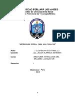 lali.pdf