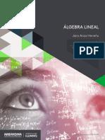 Sistema de Ecuacion Lineales.pdf