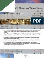Cap 3- Absorción.pdf