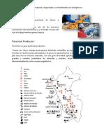 El Potencial Productor y Exportador y Su Problemática en La Región Ica
