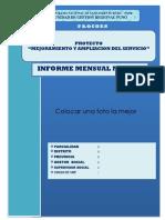 INFORME  MODELO 070717.docx
