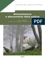 2015 Alimentazione Gallina Bassa