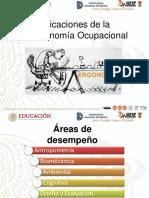 APLICACION DE LA ERGONOMIA OCUPACIONAL.pptx