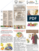 TRIPTICO NUTRICION.docx